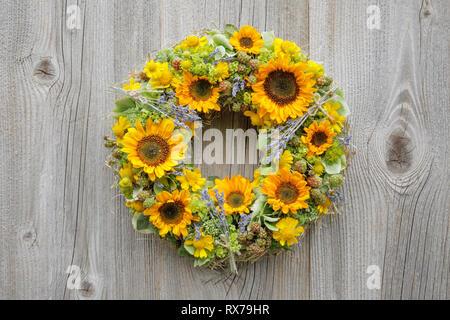 Botanik, Sonnenblumen, wreath Dekoration, No-Folded-Card oder Greeting-Card oder Postcard-Use, weltweit, unbegrenzte Zeit, Stockbild