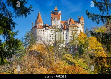 Draculas Schloss in Bran, Siebenbürgen, Rumänien Stockbild