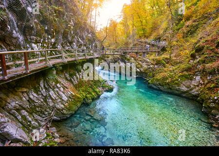 Schlucht Vintgar, Triglav Nationalpark, die Julischen Alpen, Slowenien Stockbild