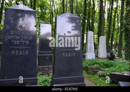 Deutschland, Berlin, Stadtteil Prenzlauer Berg, der jüdische Friedhof an der Schonhauser Allee Stockbild