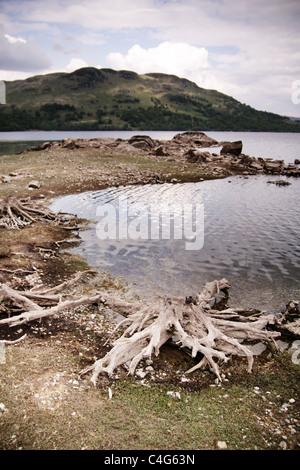 Loch in Schottland Stockbild