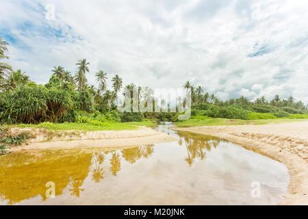 Balapitiya, Sri Lanka, Asien - eine wilde, kleine Fluss in Richtung der Urwald von balapitiya Strand Stockbild