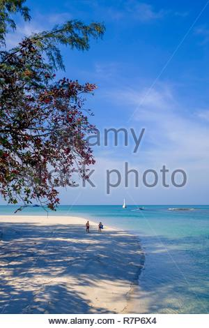 Thailand Songkhla Provinz, Tarutao National Marine Park, Ko Tarutao Insel, Ao Pante Malacca Strand Stockbild