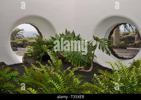 Zimmerpflanzen zu den Jameos del Agua, eine touristische Attraktion in einer Lavahöhle wurde von Cesar Manrique, mit runden Bullaugen, Lanzarote. Stockbild
