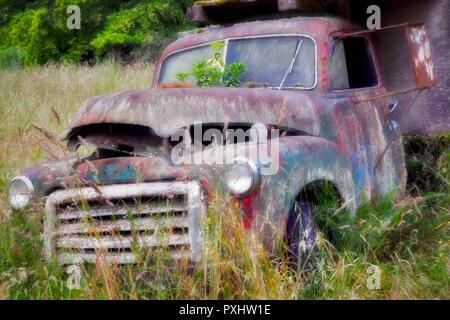 Alte Lkw im Feld in Sequim, Washington. Stockbild