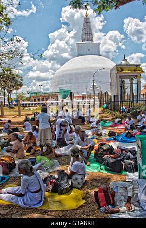 Buddhistische Pilger sitzen vor Ruvanwelisaya Stupa am Tempel von Anuradhapura, Sri Lanka Stockbild