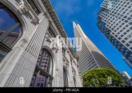 Ansicht der Transamerica Pyramid Gebäude im Finanzdistrikt von Downtown, San Francisco, Kalifornien, Vereinigte Staaten von Amerika, Nordamerika Stockbild