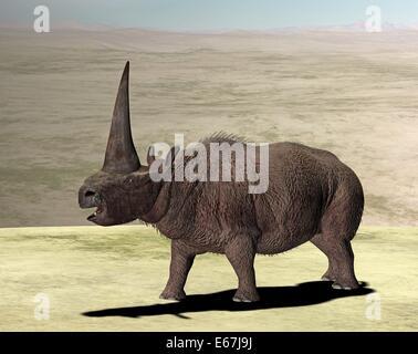 Elasmotherium / Elasmotherium Stockbild