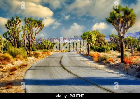 Straße in der Joshua Tree National Park. Kalifornien Stockbild