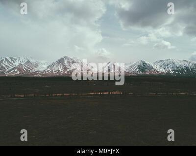 Feld in der Nähe von Snowy Mountain Range Stockbild
