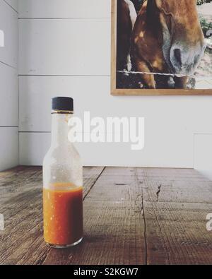 Pferd und Hot Sauce Stockbild