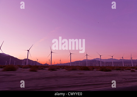 Sonnenuntergang über Windkraftanlagen in der Wüste Palm springs, USA Stockbild