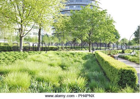 Töpfer Felder Park - grüne Laub im Frühjahr, moderne Stadt Halle und mehr London Riverside Bürogebäude. Stadt London UK. Stockbild