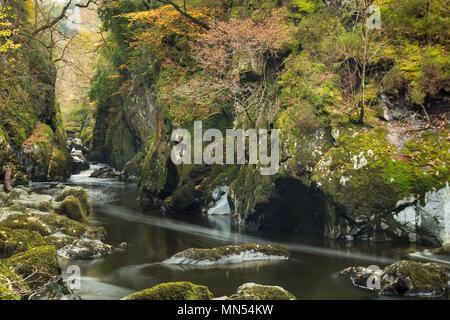 Die Fairy Glen, Conway Tal, Snowdonia, Wales, Großbritannien Stockbild
