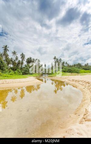 Balapitiya, Sri Lanka, Asien - ein wilder Fluss in Richtung der Urwald von balapitiya Strand Stockbild