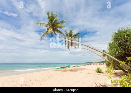 Balapitiya, Sri Lanka, Asien - Die schöne Landschaft am Strand von Balapitiya Stockbild