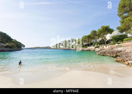 Cala d'Or, Mallorca, Spanien - August 2016 - ein junges Zicklein spielen im Wasser am Strand von Cala d'Or Stockbild