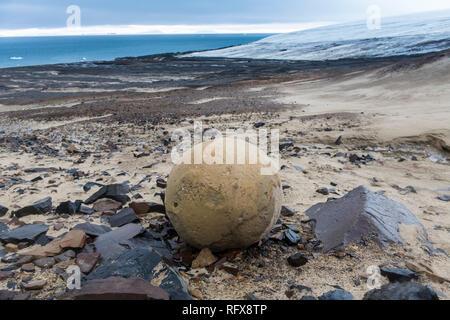 Riesen Stein Kugel, Champ Insel, Franz Josef Land Archipel, Arkhangelsk, Arktis, Rußland, Europa Stockbild