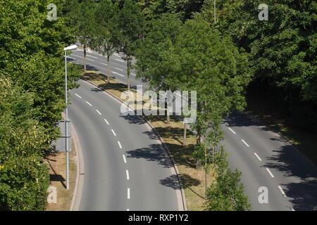 Straße mit Bäumen, Bayreuth, Bayern, Deutschland, Europa Stockbild