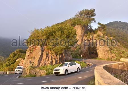 TF-12 Straße durch felsige Vulkanlandschaft mit Lorbeer, Nebel im Anagagebirge im Nordosten von Teneriffa Kanarische Inseln Spanien bilden. Stockbild