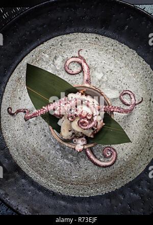 Frische Octopus in der Schüssel mit Saatgut garnieren, Stillleben, Ansicht von oben Stockbild