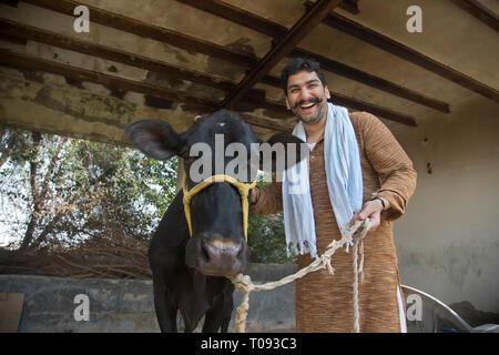 Lachend Milchbauern stehen in seinem Kuhstall mit einer Kuh. Stockbild
