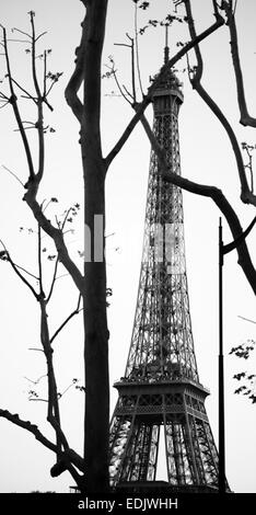 Eiffel Turm Blick in Paris durch den Zweig der Bäume Stockbild
