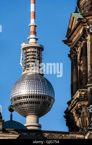 Berliner Dom und Fernsehturm, Mitte, Berlin, Deutschland Stockbild
