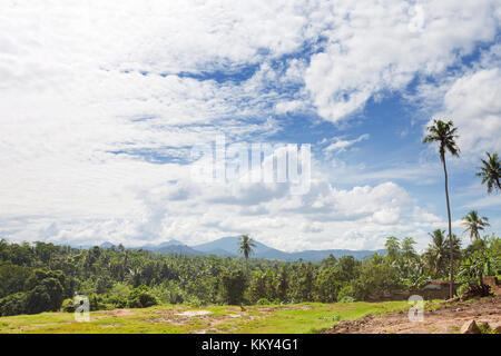 Wilde Landschaft in Pinnawala - Sri Lanka, Asien Stockbild
