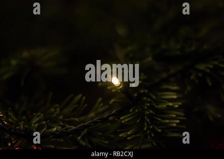 Geschmückten Weihnachtsbaum mit Kerzenlicht und dunkel grüne Zweige Stockbild