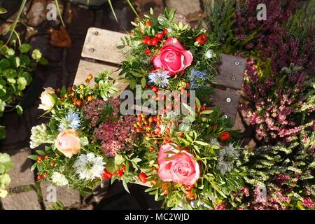 Sommer Blumen in Blumentöpfe auf einem Blumenmarkt, Bremen, Deutschland, Europa ich Sommerblumen in Blumenkübeln mit dem Blumenmarkt, Bremen, Deutschland, Eu Stockbild