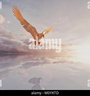 Reflexion der Adler fliegen in Wolken Stockbild