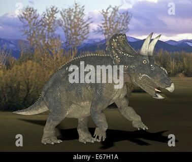 Dinosaurier Nedoceratops / Dinosaurier Nedoceratops Stockbild