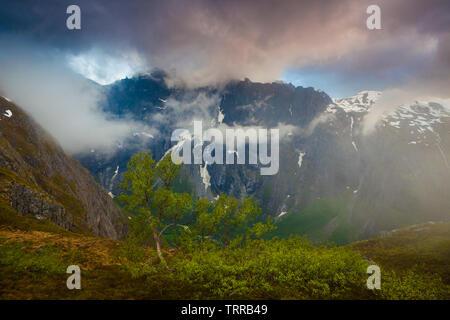 Misty Landschaft an einem Juni Abend in Romsdalen, Møre og Romsdal, Norwegen. Stockbild