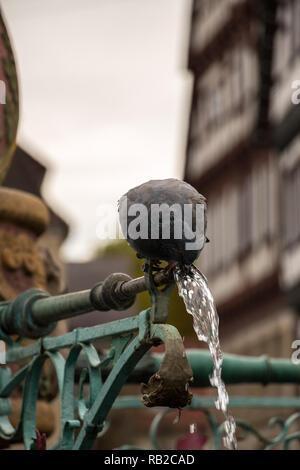 Trinken Taube sitzt auf einem Brunnen mit alten Häusern im Hintergrund Stockbild
