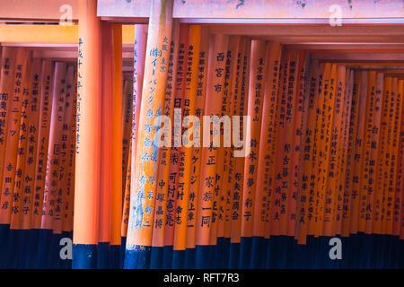 Zinnoberrot torii Tore, gespendet und durch Unternehmen und Einzelpersonen eingeschrieben, Fushimi Inari Schrein, Kyoto, Japan, Asien Stockbild