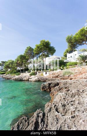 Cala d'Or, Mallorca, Spanien - eine felsige Küste und und schöne Bäume am Strand von Cala d'Or Stockbild