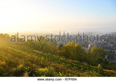 Frankreich, Bas Rhin, Obernai, Gesamtansicht mit Saint Pierre und Paul Kirche und Kapelle Turm Stockbild
