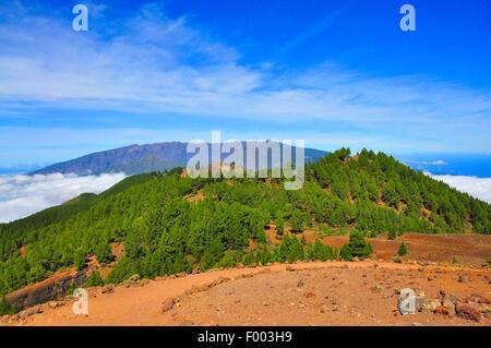 Vulkankrater oberhalb der Wolken, Kanarische Inseln, La Palma Stockbild