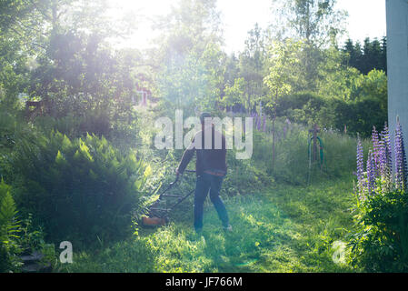 Mann im Garten Rasen mähen Stockbild