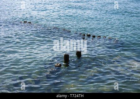 Einsätze der buhnen das Wasser der Bodensee, Lindau, Bayern, Deutschland. Stockbild