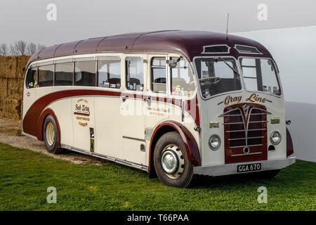 1948 Foden Fullfront Plaxton single Decker Gray Line Bus umgewandelt in einen Transporter auf der 77th Goodwood Mitgliederversammlung, Sussex, UK Stockbild