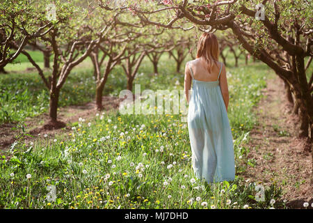 Frau wandern in einem Obstgarten. Frieden und Harmonie Stockbild