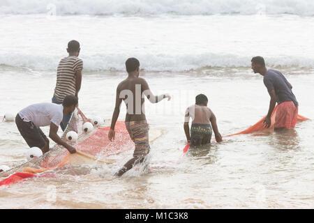 Akurala Strand, Sri Lanka - Dezember 2015 - einheimische Fischer, die Haspel in einem riesigen Netz, das ist eine Stockbild