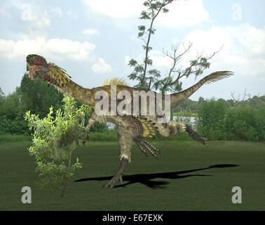Dinosaurier Citipati / Dinosaurier Citipati Stockbild