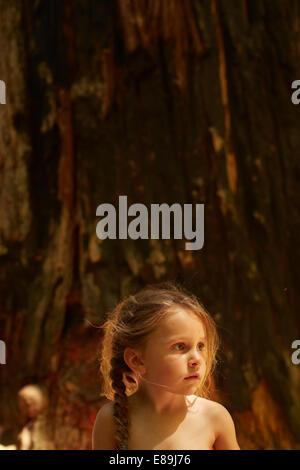 Mädchen sitzen vor der riesigen Redwood-Baum Stockbild