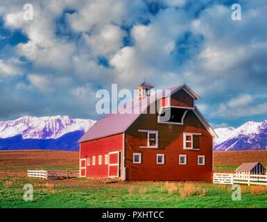 Scheune mit weißen Zierleisten und Weide mit Wallowa Mountains. Oregon Stockbild