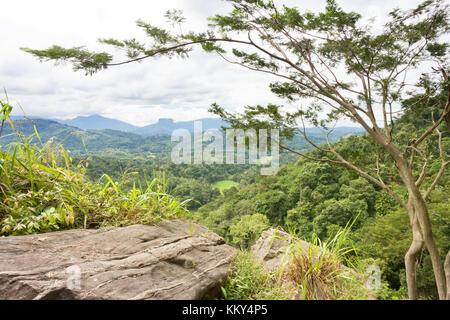 Uthuwankanda, Kandy, Sri Lanka, Asien Stockbild
