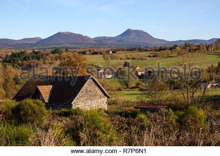 Frankreich, Puy de Dome, Bereich als Weltkulturerbe von der UNESCO, Châtel-Guyon, Regionaler Naturpark der Vulkane der Auvergne, Chaîne des Puys, Wald im Herbst aufgeführt Stockbild