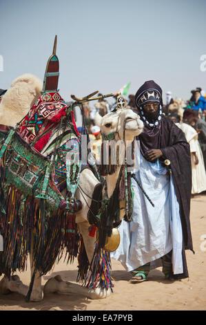 Touareg Nomaden in Camel Dressur-Wettbewerb - die Cure Salée Festival, Niger Stockbild